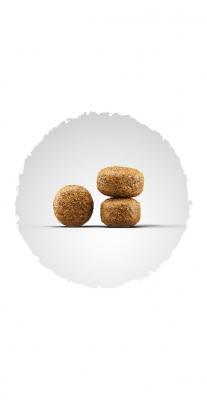 Balance (Senior Medium/Maxi 20/8) для стареющих и менее активных собак